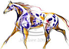 Native American Indian Appaloosa Bear Claw War Horse Art Painting