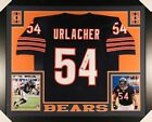 Brian Urlacher Rookie Cards and Memorabilia Guide 56