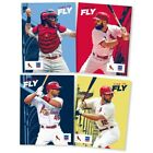 St. Louis Cardinals Collecting and Fan Guide 3