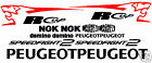 Cup-R Sticker Decal kit fits Peugeot Speedfight scooter