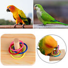 Ring Pet Supplies Bite Toys Intelligence Training Wooden Bird Chew Toy Parrot