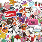 100 Random Laptop Stickers for Hydro Flask VSCO Girl Decals Skateboard Suitcase