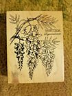 RARE PSX K 648 Wisteria Wood Mounted Botanical Rubber Stamp Flowers Floral
