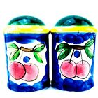Salt and Pepper Shaker Set Decorative Collectible Fruit Salt and Pepper Shakers