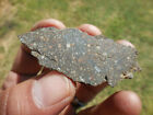 16 gram NWA 12322 Carbonaceous CV3 Meteorite slice nice chondrules and CAIs
