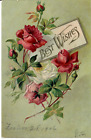 Antique Best Wishes Embossed Roses Postcard Posted 1906