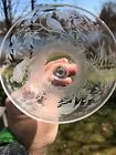 ABP Finely Engraved And Cut Glass Saucer Champagne With Birds Circa 1890