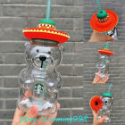 Starbucks China Latin American Style Bear Glass Drinking Straw Cold Drinking Cup