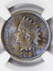 1904 INDIAN HEAD CENT NGC MS 65 BN STUNNING NEON BLUE TONING AMAZING EYE APPEAL