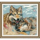 Oven counted cross stitch kit Native souls 35x32cm DIY