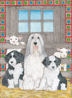 Bearded Collie Blank Note Cards Boxed