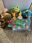 Ty Beanie Baby Hissy And Smoochy With Slither Beanie Buddy Mint Condition