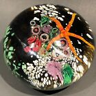Peter Raos 1996 New Zealand Art glass paperweight UNDERWATER SCENE series MASTER