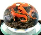 Incredible GORDON SMITH School of KOI FISH Art Glass PAPERWEIGHT Amazing Detail