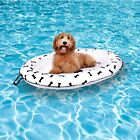 Dog Pool Float Ride on Raft for Dogs and Swimming Pets