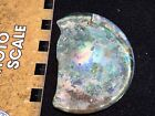 ANCIENT ROMAN or earlier BLOWN GLASS LARGE BASE Section Rainbow Iridescent