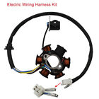Electric Wiring Harness Kit Spark Plug Magneto Stator Fit For 250CC Quad Scooter