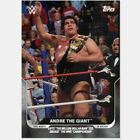 Topps This Moment in WWE History Wrestling Cards 23