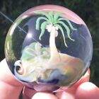 45mm 175 Palm Tree Island Sea Wave Glass Marble Paperweight Brian Howie PM121