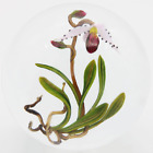 Unique FASCINATING Large CHRIS BUZZINI Pink ORCHID Art Glass PAPERWEIGHT 1 of 1