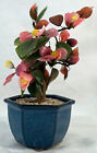 Vintage Glass Flowering BONSAI TREE in Octagon Blue Pot Cherry Blossoms