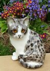 Winstanley Pottery Size 4 Grey  White Cat Cathedral Glass Eyes Signed Purrfect