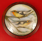 ANTIQUE CARVED WOOD HAND PAINTED BIRDS FINCH CHICADEE DECORATIVE GLASS DISPLAY