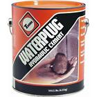10 lb. Waterplug Hydraulic Cement by Thoro T5002