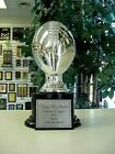 AWESOME FANTASY FOOTBALL TROPHY AWARD SILVER RESIN NEW!