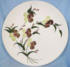 Pretty Vintage SPRAY DINNER PLATE Green Brown Flowers BLUE RIDGE POTTERY Ex