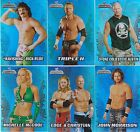 2011 TOPPS CHAMPIONS WWE 10-CARD Foil SET