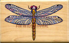 Dragonfly All Night Media Wood Mount Rubber Stamp 508F 25 x 15 Water Bug