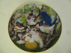Franklin Mint Heirloom Kitten Cat Collector Plate Entitled