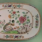 c1825 SPODE Peacock Meat Platter Drainer (hand painted Stone China, Ptrn #2118)