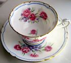 Shelley Rare Fancy CARNATION Fine Bone China Cup & Saucer 1950s