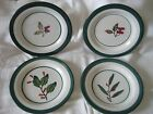 Set of 4 HARTSTONE POTTERY Salad/Sandwich Plates-Forest Pattern With Teal Trim