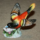Vintage Adderley Floral Baltimore Oriole Bone China Bird Figurine - 1930s-1940s