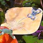 NIB Fitz & Floyd Living Color Canape Plate * Butterfly
