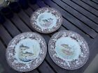 SET OF 3 -BEAUTIFUL PAINTED ASIAN CHINESE JAPANESE PLATE koi  Fish,Brown flowers