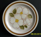 Daniele Collection New Spring Dogwood Dinner Plate 10.5