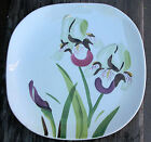 Vintage Hand Painted IRIS Redwing Dinner Plates Marked with Wing Very Scarce