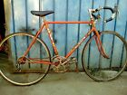 clemont bike eroica reckord vintage italian road  race italy  colnago campagnolo