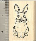 Rabbit Rubber Stamp Easter Bunny or House Pet H4804 WM