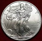Uncirculated 2009 Philadelphia Mint American Eagle Silver Dollar Free S H