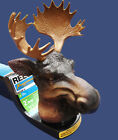 New Moose Antlers RV Truck SUV Boat Trailer Hitch Tow Ball Cover Large Towing