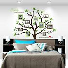 Family Tree Wall Decal Photo Frame Removable Large Vinyl Sticker Home Art Decor