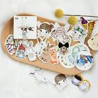 Hot Creative Cute Rabbit Pet Paper Stickers Diary Decor DIY Scrapbooking Sticker