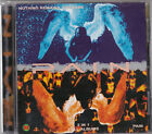 Pain – Nothing Remain The Same / Pain ULTRA RARE COLLECTOR'S CD! FREE SHIPPING!