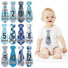 Boy Baby Infant Monthly Stickers Tie New Born Baby Party Shower 1 to 12 Months