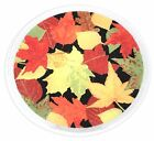 Peggy Karr Autumn Leaves 11 Plate NEW in box with sticker  brochure